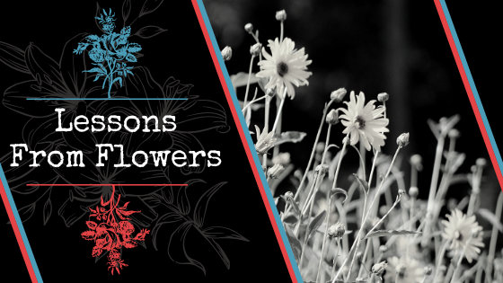 Lessons from Flowers